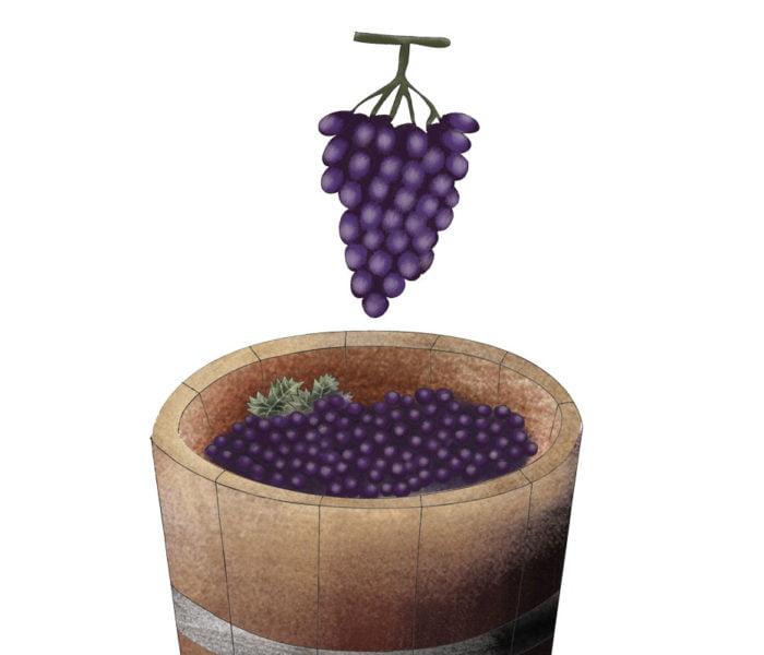Il viaggio del vino